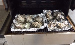 Oysters on the Mak Grill