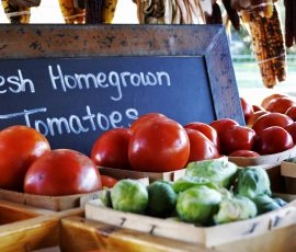 Several reasons to shop at your local farmer's market